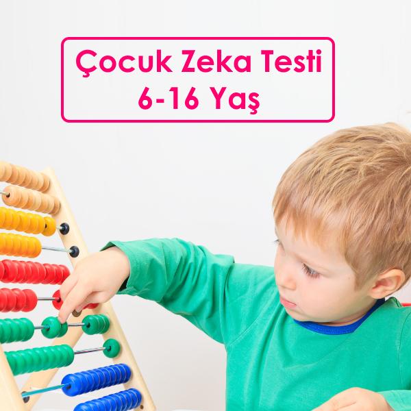 gaziantep-zeka-testi-wiscar-r